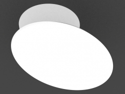 Lamp of the bill of lading (DL18429 11WW-White Dim)