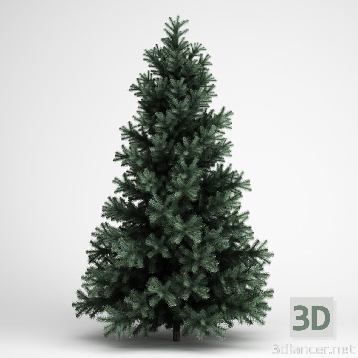 3d modeling Spruce model free download