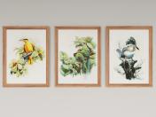 Set di dipinti di Zeng Xiao Lian