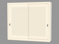 Two-door wardrobe (with a picture)