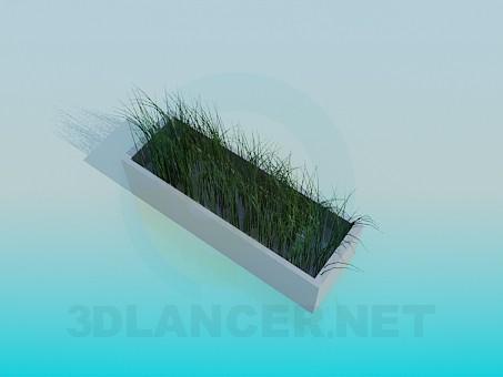 3d модель Трава – превью