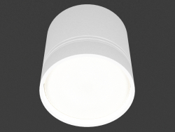 Overhead Ceiling Light Lamp (DL18482_WW-White R)