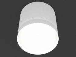 Overhead Ceiling Light Lamp (DL18484_WW-White R)