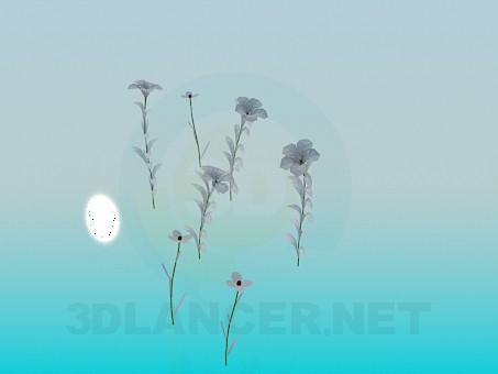 3d модель Весняні квіточки – превью