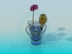 Double glass vase with chrysanthemum