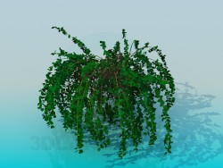 pianta della casa