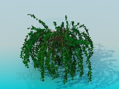 descarga gratuita de 3D modelado modelo Planta de interior