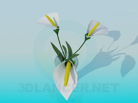 3d model Flower - preview
