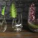 3d Plant terrarium. SET PREVIEWNUM#