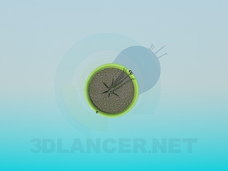 3d model Plant - preview