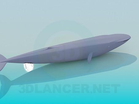 3 डी मॉडल ब्लू व्हेल - पूर्वावलोकन