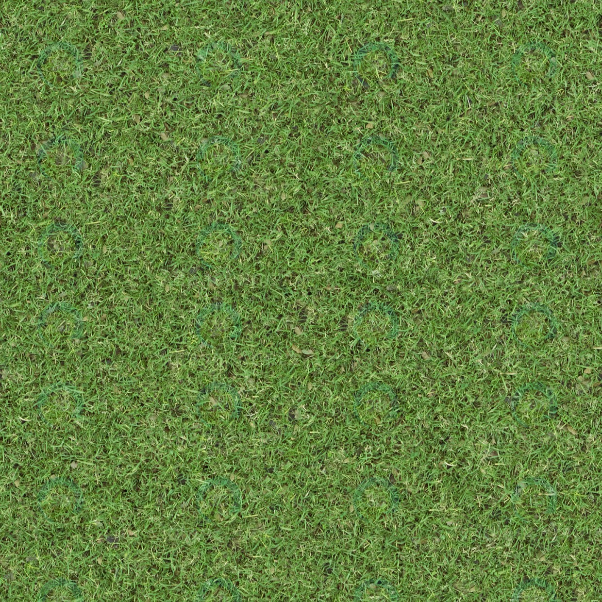 Texture Grass free download - image