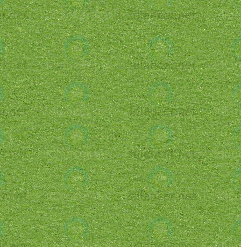 Descarga gratuita de textura Hierba - imagen
