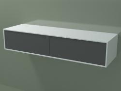 Caja doble (8AUEAA02, Glacier White C01, HPL P05, L 120, P 36, H 24 cm)