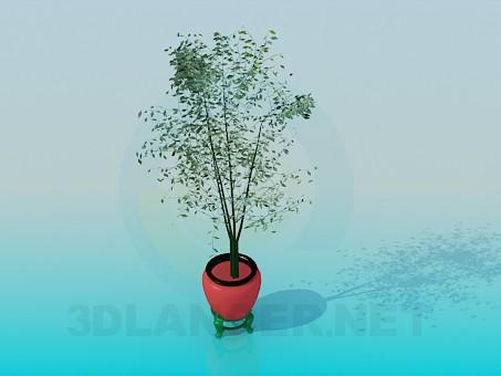 3d modeling Pot model free download