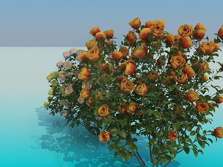 3d модель Розовые кусты – превью