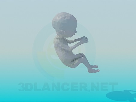3d model Embryo - preview