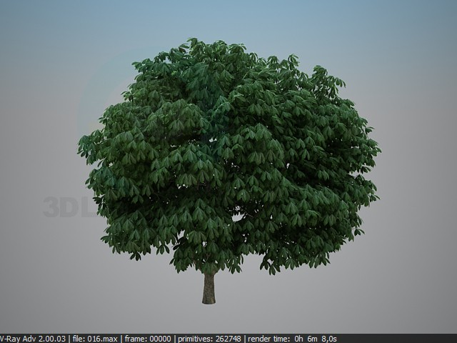 3d modeling chestnut model free download