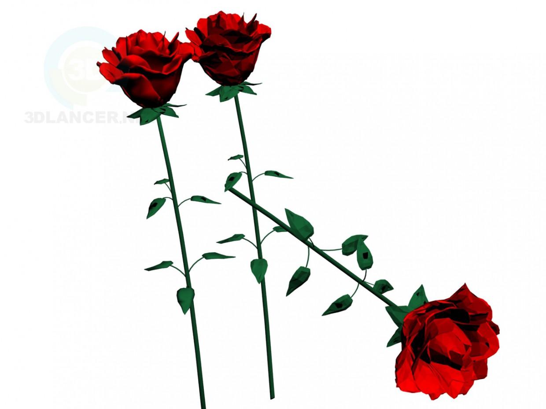 3d model Rosas - vista previa