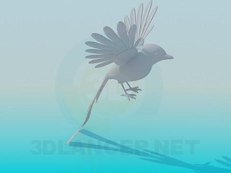 modelo 3D Pájaro - escuchar