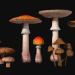 3d Mushrooms Set1 model buy - render