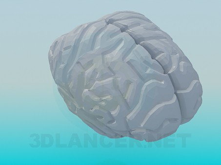 3d model The human brain - preview
