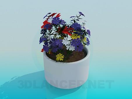 3d модель Горщик з квіточками – превью