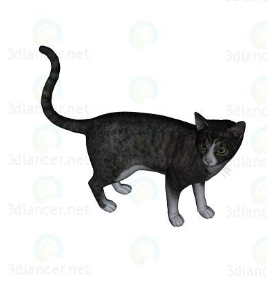 modelo 3D Barsik CAT 1 - escuchar