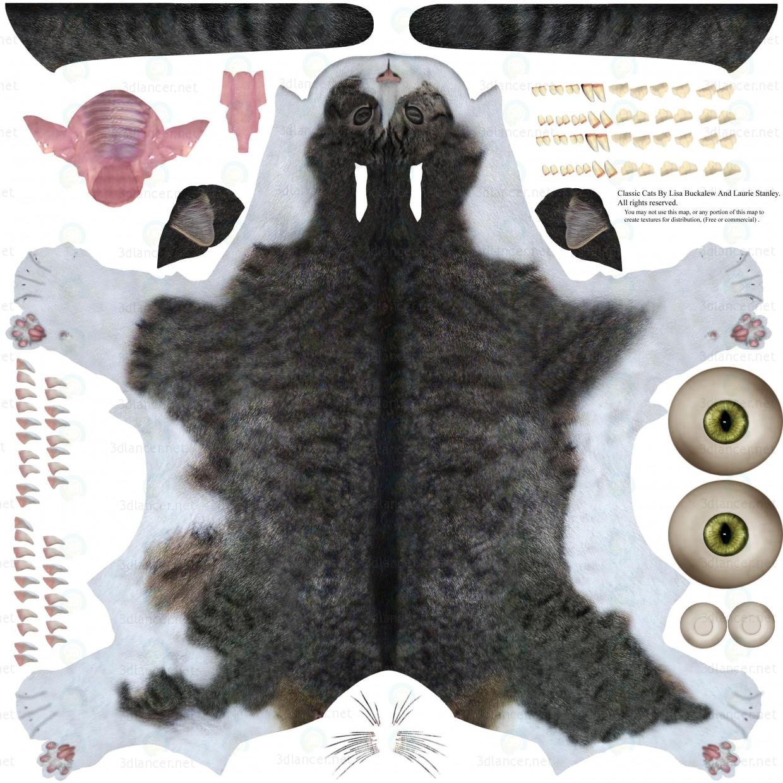 3d model Cat Barsik 1 - preview