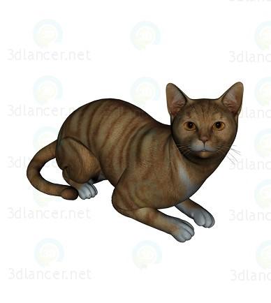 3d model Barsik the cat 2 - preview