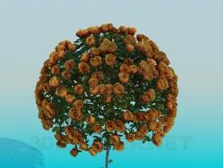 Дерево с розами