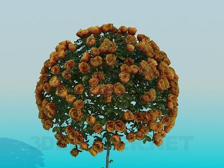 descarga gratuita de 3D modelado modelo Rosas frondosas