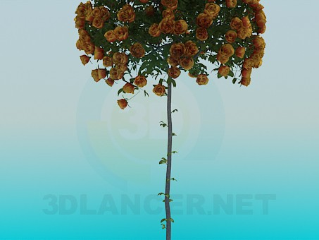 3d model Tree with roses - preview