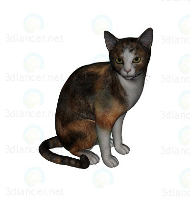 3d model Barsik the Cat 3 - preview