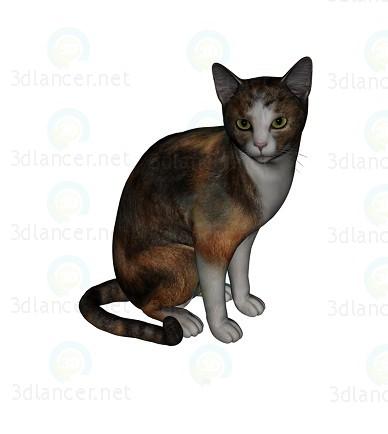 3d модель кот Барсик 3 – превью