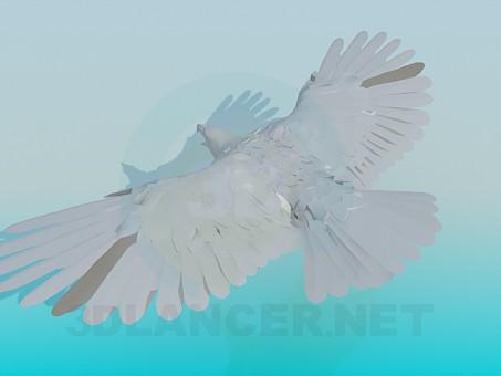 3d model Flying eagle - preview