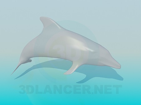 3d model Dolphin - preview