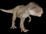Tyrannosaure Rex