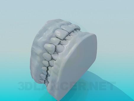 3d моделирование Модель зубов человека модель скачать бесплатно
