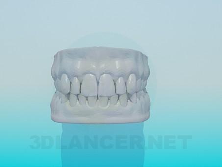 3d model Model of human teeth - preview