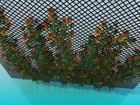 3d модель Плетущиеся розы – превью