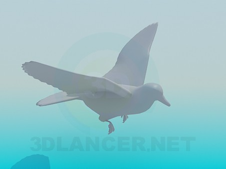 3d model Flying Pigeon - preview