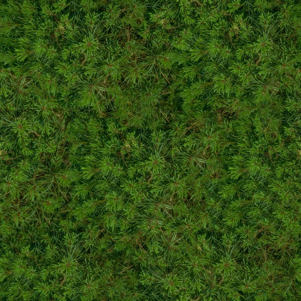 Seamless texture of grass download texture - thumbs
