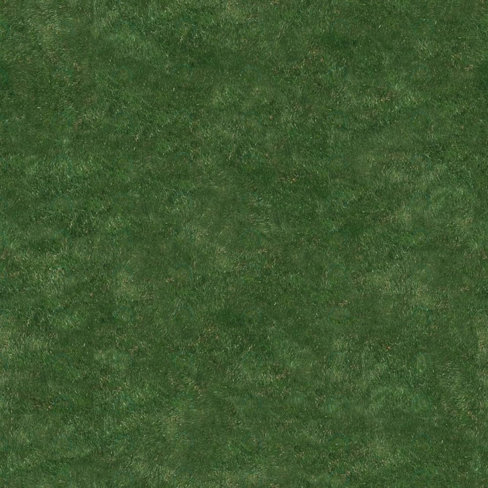 Download texture Seamless texture of grass for 3d max ...