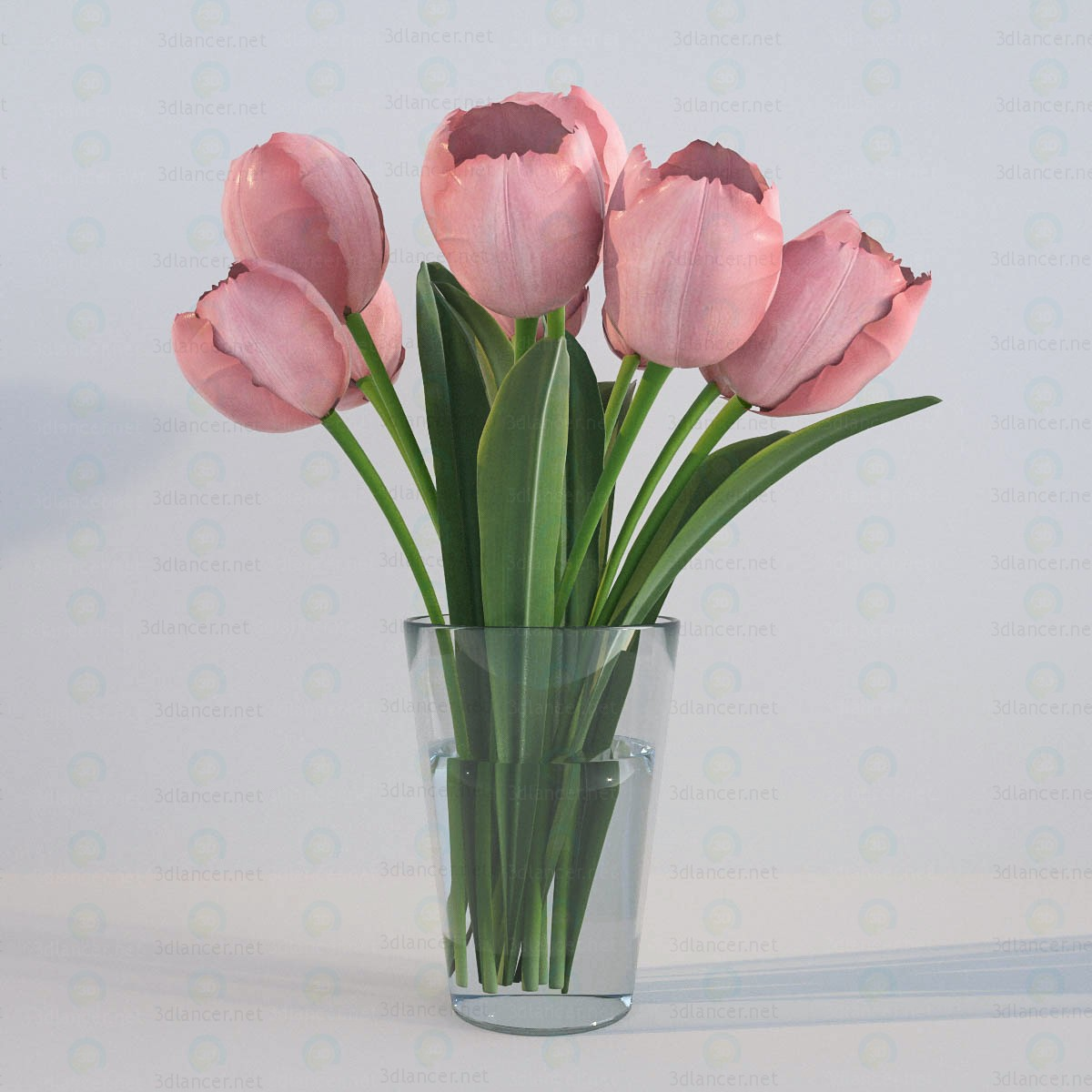 3d model Tulips - preview