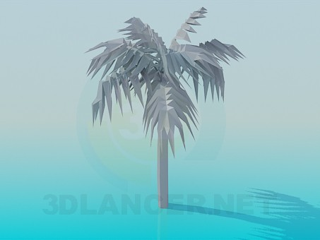 3d model Palm tree, 3ds, - Free Download | 3dlancer net