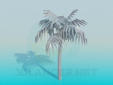 3d модель Пальма – превью
