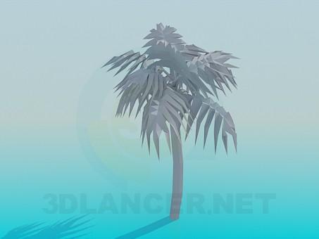 modelo 3D Palma - escuchar
