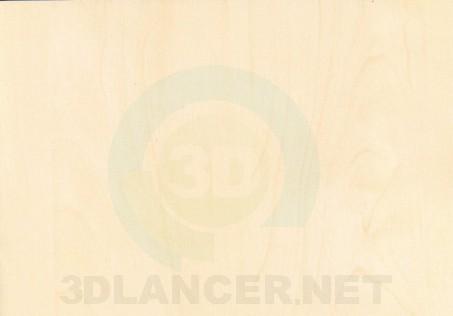 Descarga gratuita de textura Abedul de Mainau - imagen