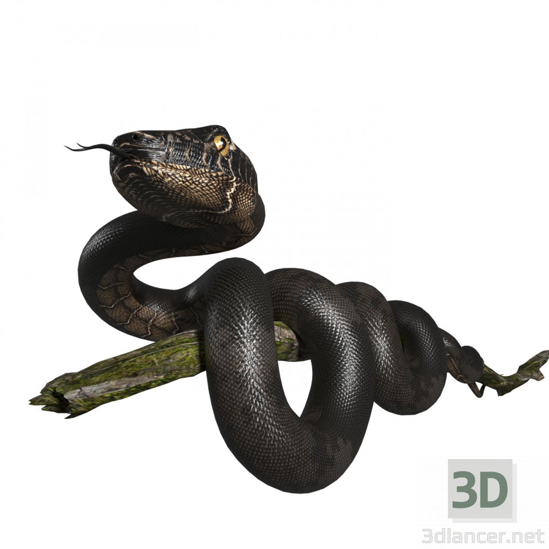 3d model Snake - preview